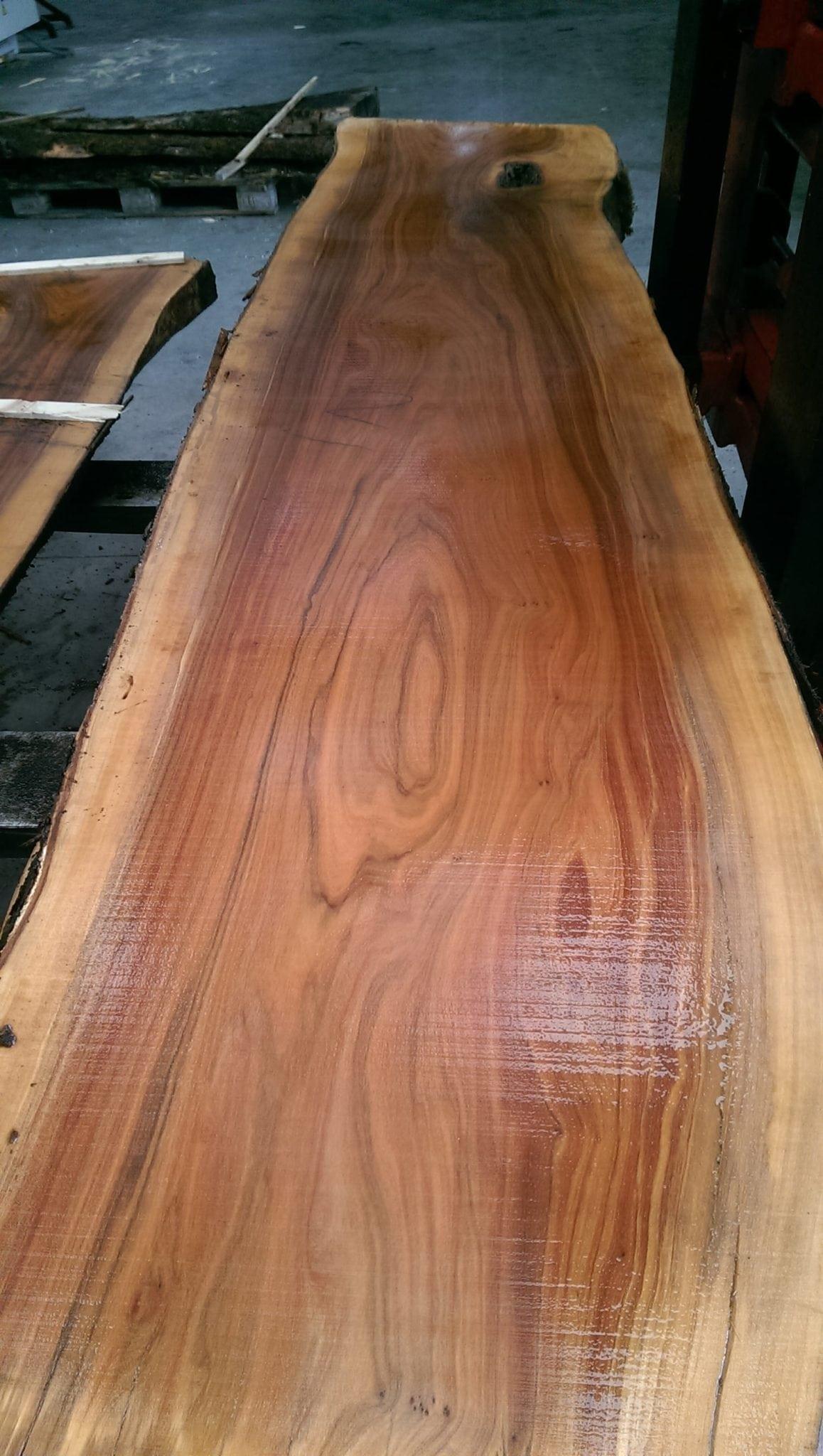 Tavolame olivo vela s r l - Vendita tavole di legno ...