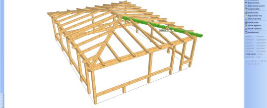 Progettazione completa di tetti e strutture in legno in 3D